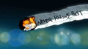 Name:  Never Knows Best.jpg Views: 111 Size:  7.0 KB