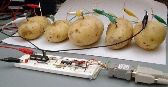 Name:  potato server.jpg Views: 106 Size:  44.1 KB